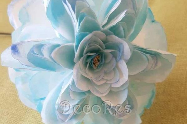 english-rose-light-blueD7E23DEE-564D-9F9B-40E3-B584D06CA789.jpg