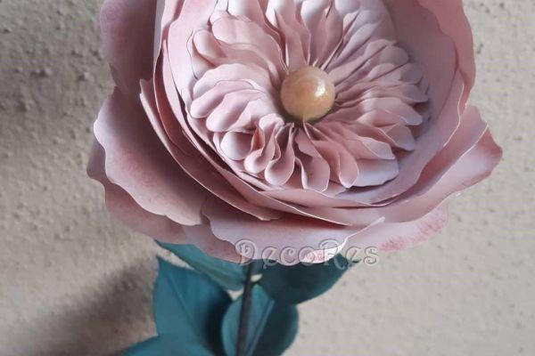 garden-roseA1C7ACBB-66F9-79C0-8DB6-5948DDB3E2A2.jpg