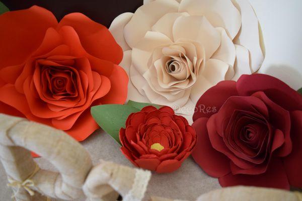 giant-roses0F03928F-899C-385B-369C-A9A1B696ED04.jpg