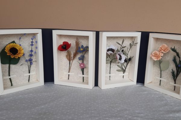 i-fiori-della-mia-estate04FC03FD-A26C-776B-8EAB-EAC750136B95.jpg