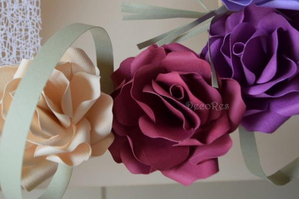 jupiter-roses6CD3967E-C3D3-4603-E4AA-4EEEC0BAC565.jpg