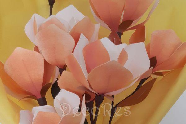 magnoliaFFFE1B14-B487-B2EE-1110-7D73AF1418CA.jpg