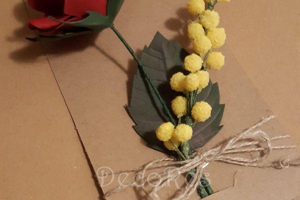 rosa-e-mimosa6F07540E-8751-2230-9930-7A119850E95C.jpg