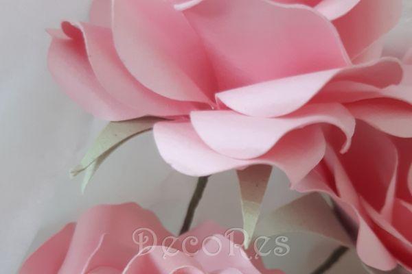 rose-roseC3904271-3F9F-ACE4-2437-0D9B3856AF50.jpg